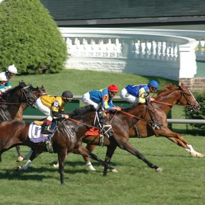 3 race horses side by side, half a length apart with jockeys racing down grass track