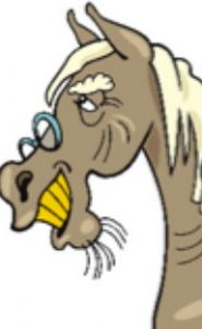 Cartoon of old grey horse with glasses, yellow teeth and wrinkles