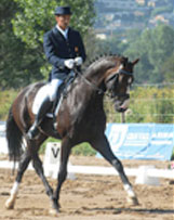 Horse and Rider dressed up competing at a show